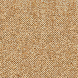 carpet_bg